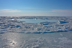 Ice of the Arctic Ocean off the coast of Chukotka. Royalty Free Stock Photo