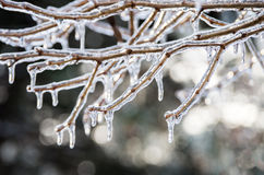 Ice azhur. Icing. Natural phenomenon. Winter сold beauty stock image