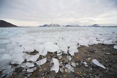 Ice on the beach - Arctic landscape Royalty Free Stock Photo