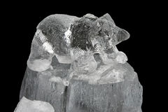 Ice bear. Carved small bear frozen sculpture in ice royalty free stock photography