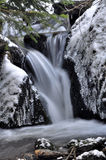 Ice beauty Stock Image