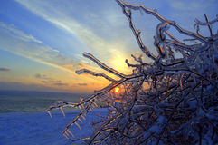 Seaside ice winter sunset  Stock Images