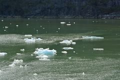 Ice bergs at Tracy Arm Fjord. Ice bergs floating in Tracy arm fjord royalty free stock image