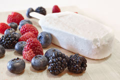 Ice and berries. Some sort of berries: blueberries, blackberries, raspberries Stock Image