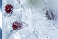 Ice. Berry´s inside the ice Royalty Free Stock Image