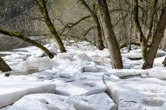 Ice blocks Stock Image