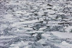 Ice blocks floating over the water of a frozen river Royalty Free Stock Image