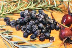 Ice blueberries with rosemary, dry rose buds and lavender. stock photos
