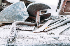 Ice boer outside with snow frost on it Royalty Free Stock Images