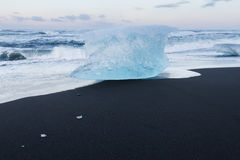 Ice breaking from icebergs on black sand beach Royalty Free Stock Image