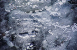 Ice Bubbles floating to the surface of a Glacier Royalty Free Stock Image