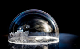 Ice Bubbles. Frozen bubbles outside in the cold winter Royalty Free Stock Photography