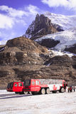 Ice buses. Buses on the Athabasca Glacier tour, 2010 Stock Photo