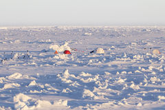 Ice camp over an ice floe in Antarctica. Tent and domes of an ice camp over an ice floe in Antarctica Stock Images