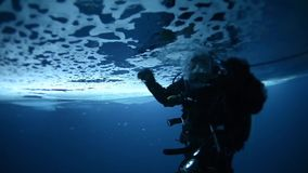 ICE CAMP SARGO, MARCH 2016, Diver dives direct under ice shell. A Navy diver dives under the ice shell in the Arctic Ocean stock video