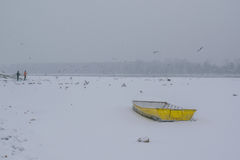 Ice capured yellow boat and people feeding birds on frozen Danub Stock Image