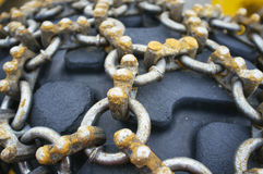 Ice chains Stock Image