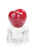 Ice Cherries Royalty Free Stock Photography