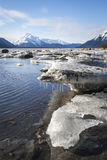 Ice chunks in the Chilkat Estuary Stock Photo