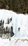 Ice climbing in Banff Canada Stock Images