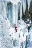 Ice climbing the waterfall. Stock Photography