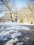 Ice Clumped Roadway Stock Images