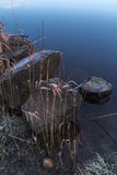 Ice coated stones and grasses on the lakes edge Stock Photos