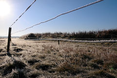 Ice coated wire fence in a farm field