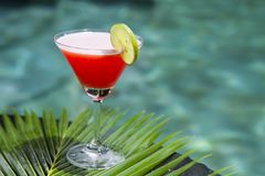 Ice cocktail cosmopolitan. Royalty Free Stock Images