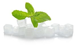 Ice for cocktail and the spearmint leaves Stock Photos