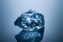 Ice cold beauty. Royalty Free Stock Image