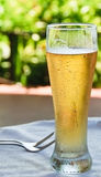 Ice cold beer. Royalty Free Stock Images