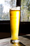 Ice Cold Beer on Classic Tall Glass Stock Images