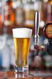 Ice Cold Beer stock photography