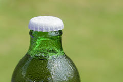 Ice cold bottle of beer Stock Image