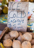 Ice Cold Coconuts at Farmer`s Market in Hawaii Royalty Free Stock Images