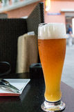 Ice cold frothy beer Royalty Free Stock Photography