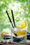 Ice Cold Summer Spirit Refreshment  with Lemon Royalty Free Stock Image