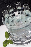 Ice Cold Russian Vodka Shots Royalty Free Stock Image
