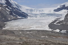 Ice Columbia Snowfields. The glacier at the Ice Columbia snowfields Royalty Free Stock Photo