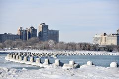 Ice Covered Beach Pilings Stock Photo