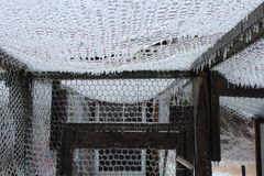Ice covered chicken wire. Amazing picture of chicken wire after a snow storm royalty free stock photo