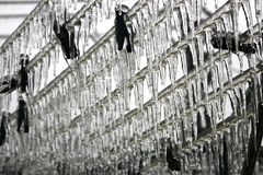 Ice-covered clothesline in the winter Royalty Free Stock Photos