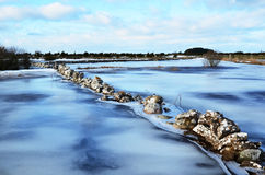Ice covered flood Stock Photo
