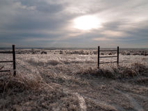 Ice Covered Horizon. Gate into an open meadow covered in ice from the January 2007 North American Ice Storm Stock Photos