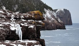 Ice covered ocean cliffs Stock Photography