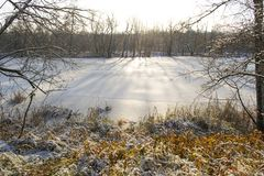 Ice Covered River under the sun stock images