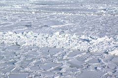 Ice covered sea. Frozen sea with flakes and pack ice Stock Photography