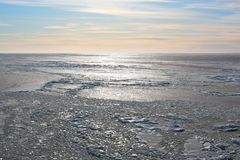 Ice covered sea Royalty Free Stock Photo