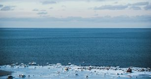 Ice Covered Shore stock photo